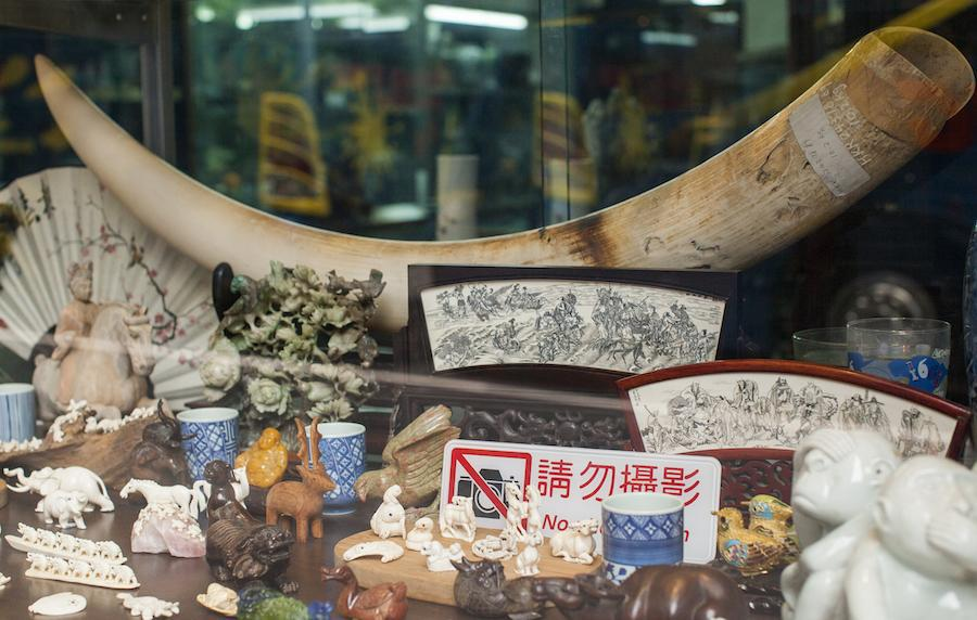 Ivory for sale in Hong Kong (Alex Hofford)